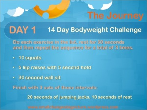 14 day challenge day 1