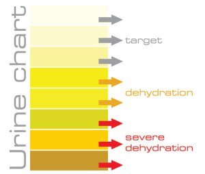 urine-chart